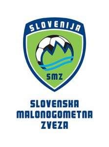 smz_logo_g
